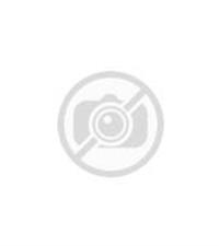 Intermediate Level: The Chinese New Year - The Nian Monster
